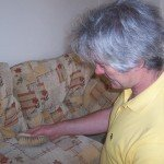 Upholstery Cleaning Agitation