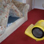 Upholstery Cleaning Drying